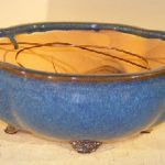 Blue Ceramic Bonsai Pot- Oval Lotus Shaped Professional Series 10.5 x 9.0 x 4.0