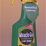 Miracle Grow Leaf Shine – 12 oz.