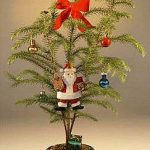 Norfolk Island Pine – With Decorations (araucaria heterophila) (Available During November & December Only)