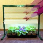 Jump Start Grow Light System – 4 FT. High Output T5