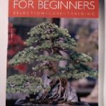Indoor Bonsai for Beginners – Selection, Care & Training by Werner M. Busch