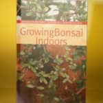 Growing Bonsai Indoors By Brooklyn Botanical Gardens