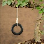 Bonsai Tree Tire Swing
